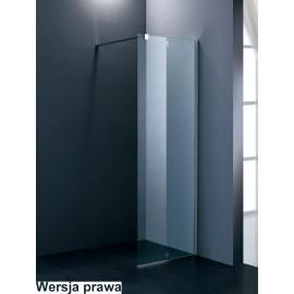 Walk-in MONA (ścianka) 100cm, 120cm